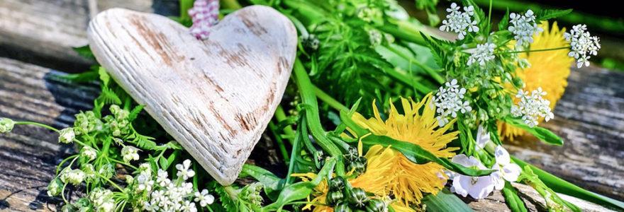 heart-flowers-banner